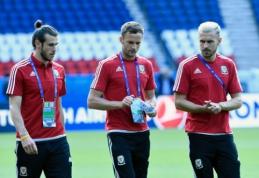"M. Starkus: ""Velsas taps ""EURO 2016"" čempionu? Kodėl gi ne"""