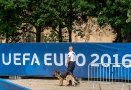 """""""EURO 2016"""": C-D grupių pristatymas (FOTO)"""
