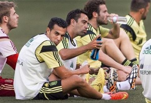 Už triumfą pasaulio čempionate ispanams pažadėtos itin solidžios premijos